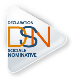 logo-declaration sociale nominative-dsn